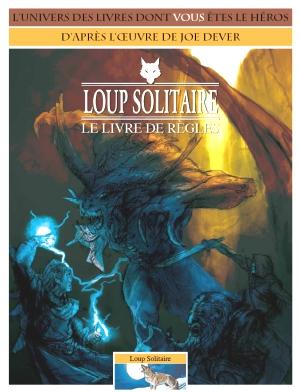 LOUP SOLITAIRE - LONE WOLF en Francais (inédit) - Page 2 Loup-solitaire-brouillon